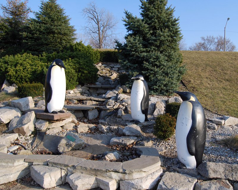 Windsor sculpture park penguins downtown