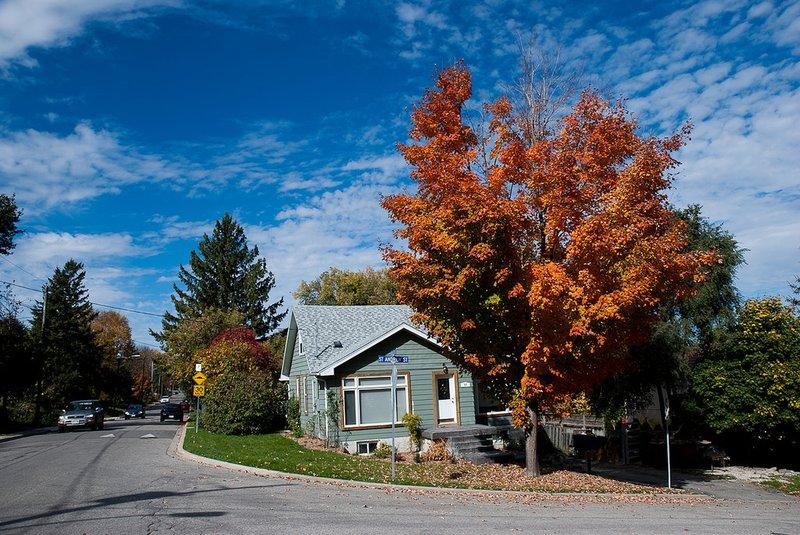 Guelph house rental neighbourhood