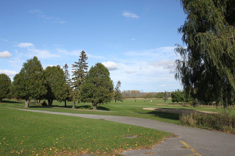 Gloucester Park Greenbelt Ottawa Nature
