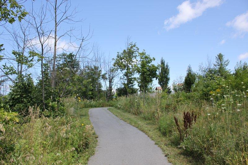 Kanata Ottawa Neighborhood nature walk park