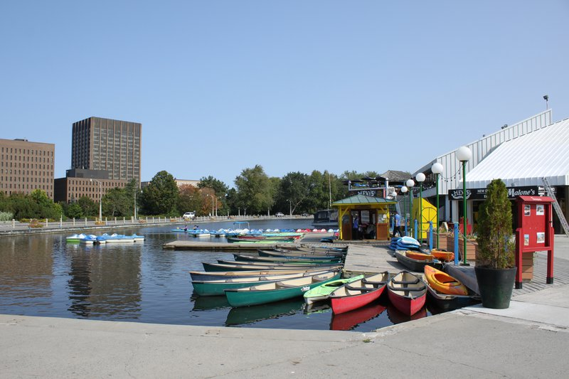 Canoe Dow's Lake Kayak Downtown neighbourhood Ottawa