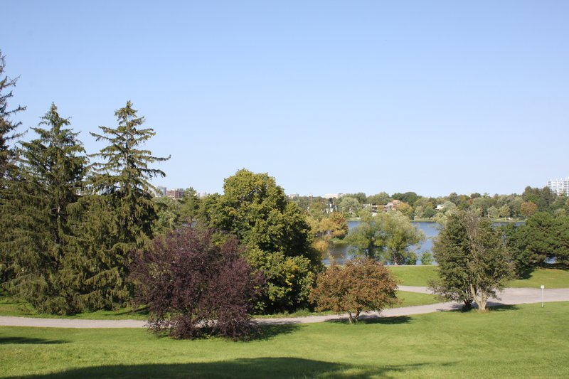 Dow's Lake Civic Hospital Lookout Nature garden park field