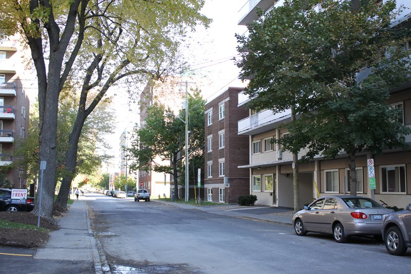 Centretown Apartment Rentals Rental Downtown Ottawa Neighbourhood