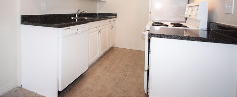 10159 118 St NW Rental
