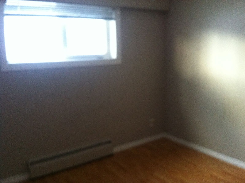 10204 76 St NW Rental