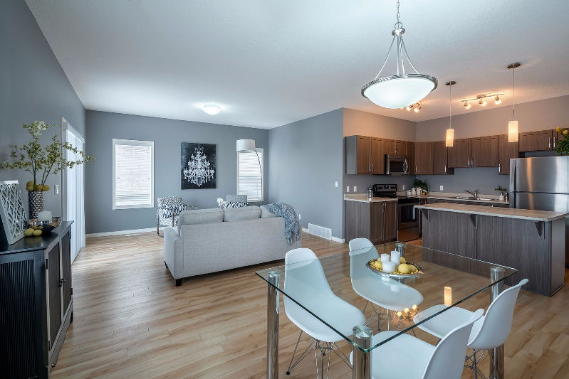 16129 141 St NW Rental