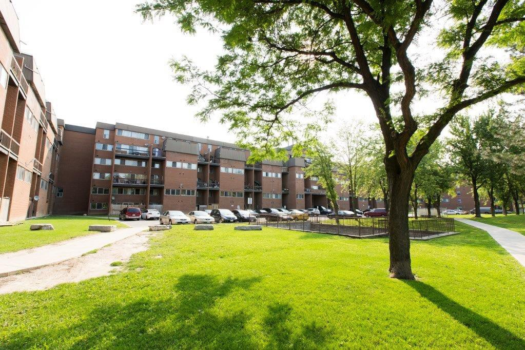 Apartment for rent at 7170, 7230, 7280 Darcel Ave, Etobicoke, ON. This is the backyard with lawn.