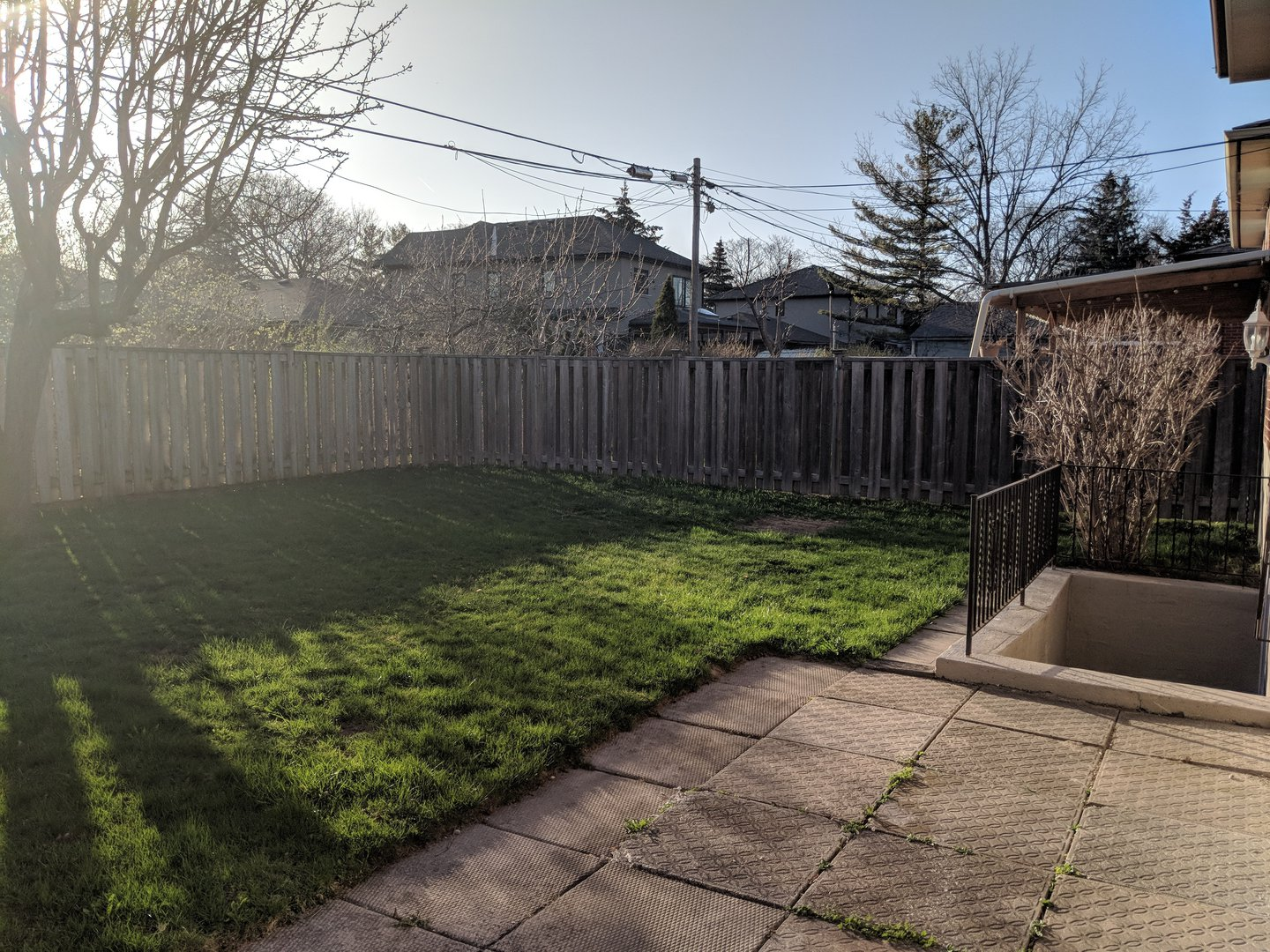 House for rent at 1162 Kipling Ave | Unit: upper, Etobicoke, ON. This is the backyard with lawn.