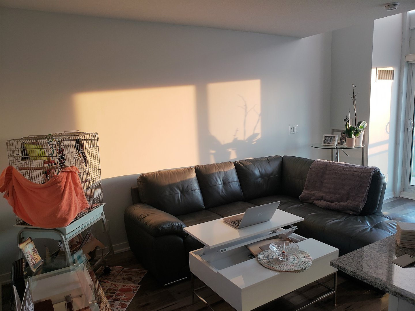 Condo for rent at 155 Legion Rd N, Etobicoke, ON. This is the living room with hardwood floor and natural light.