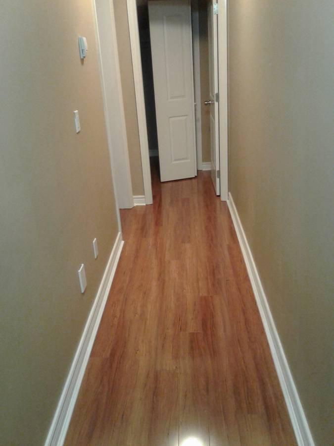 Rentals Ca 13665 64a Avenue Surrey Bc For Rent