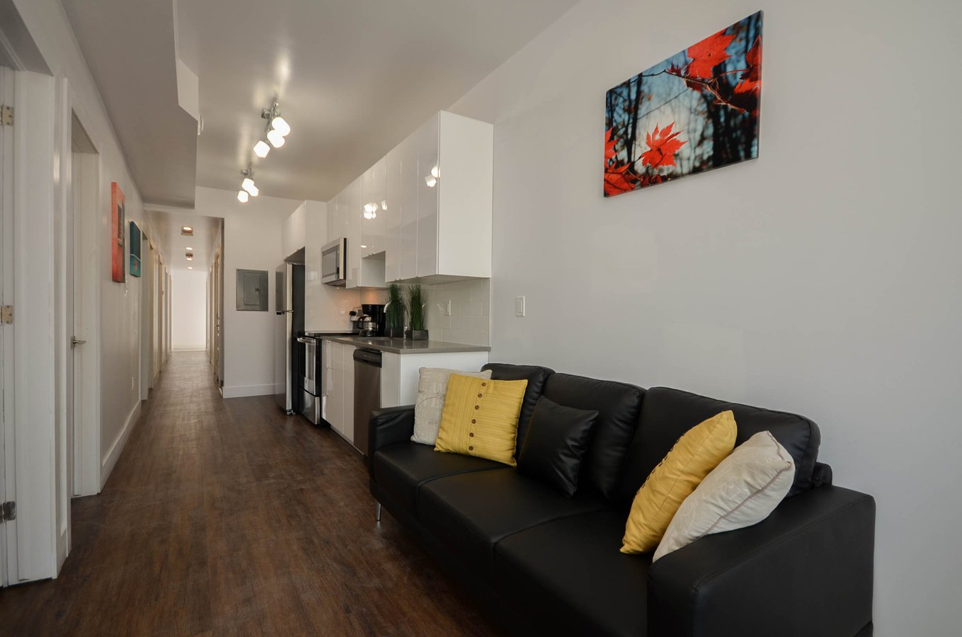 Rentals Ca Old Ottawa South Apartments Condos And Houses For Rent